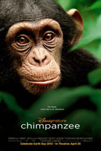 Chimpanzee preview