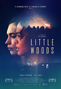 Little Woods preview