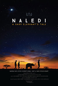 Naledi: A Baby Elephant's Tale preview