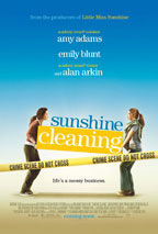 Sunshine Cleaning preview